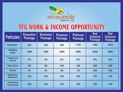 Online Marketing Work Online Jobs From TFG Vacations Pvt. Ltd. - Mumbai, India - Free Classifieds - Muamat