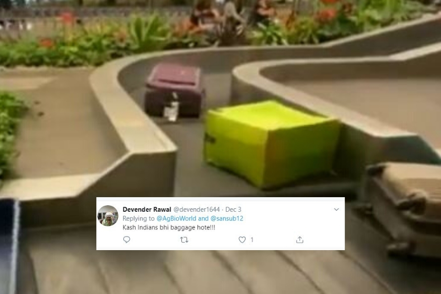 'Wish Indians were Baggage!': Twitter Hails 'Polite' Luggage That Wait for Others to Pass