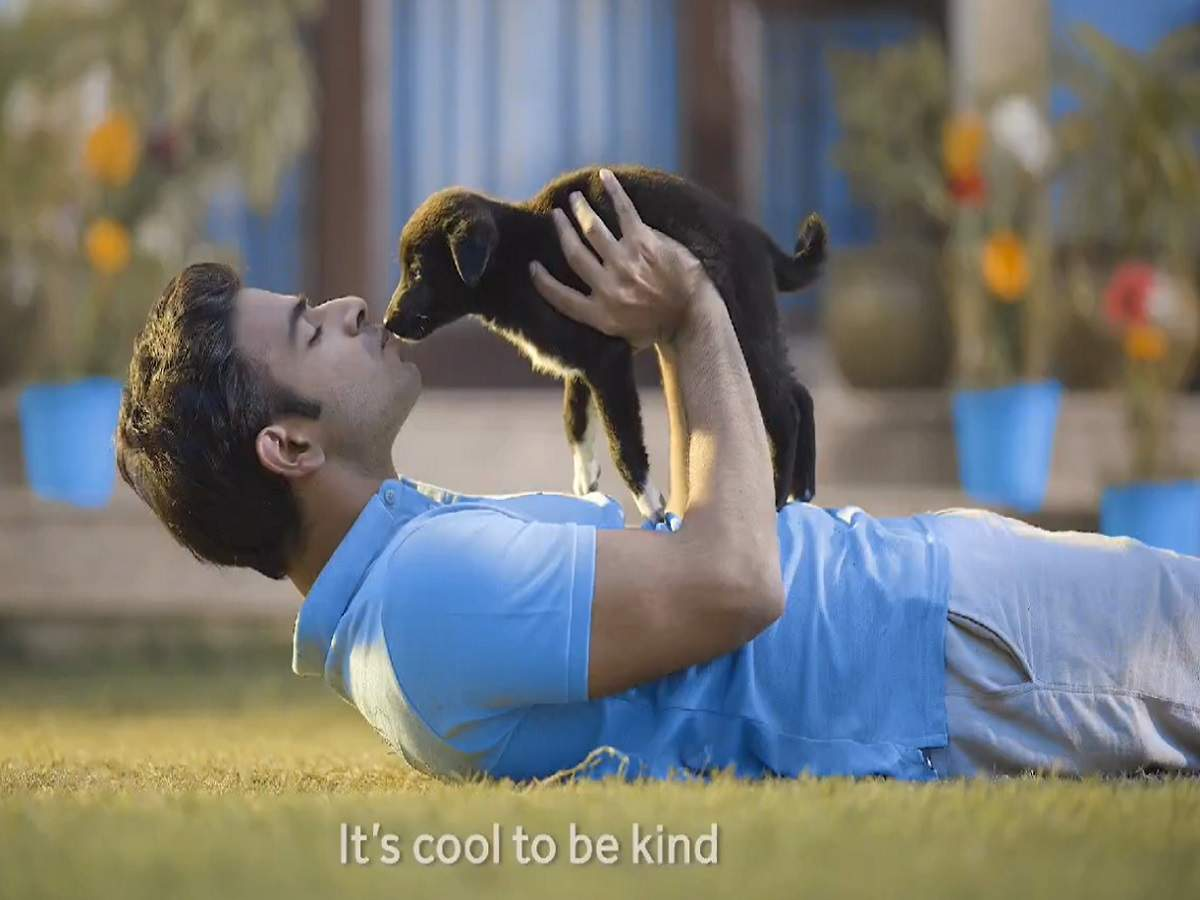 Case Study: Here's how SBI was able to grow positive sentiment for itself on Twitter by 92% with its campaign #KindnessIsCool | Business Insider India